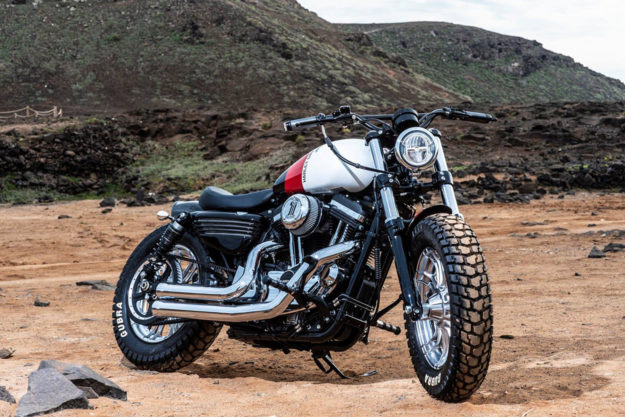 Battle Of The Kings 2019 entry from H-D Las Palmas